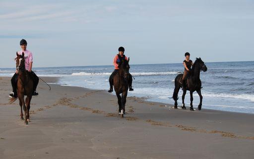 Strandcamping 't Noorder Sandt in Julianadorp aan Zee Julianadorp