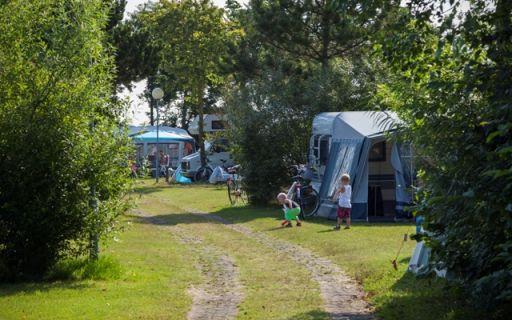 Camping De Nollen in Callantsoog Callantsoog